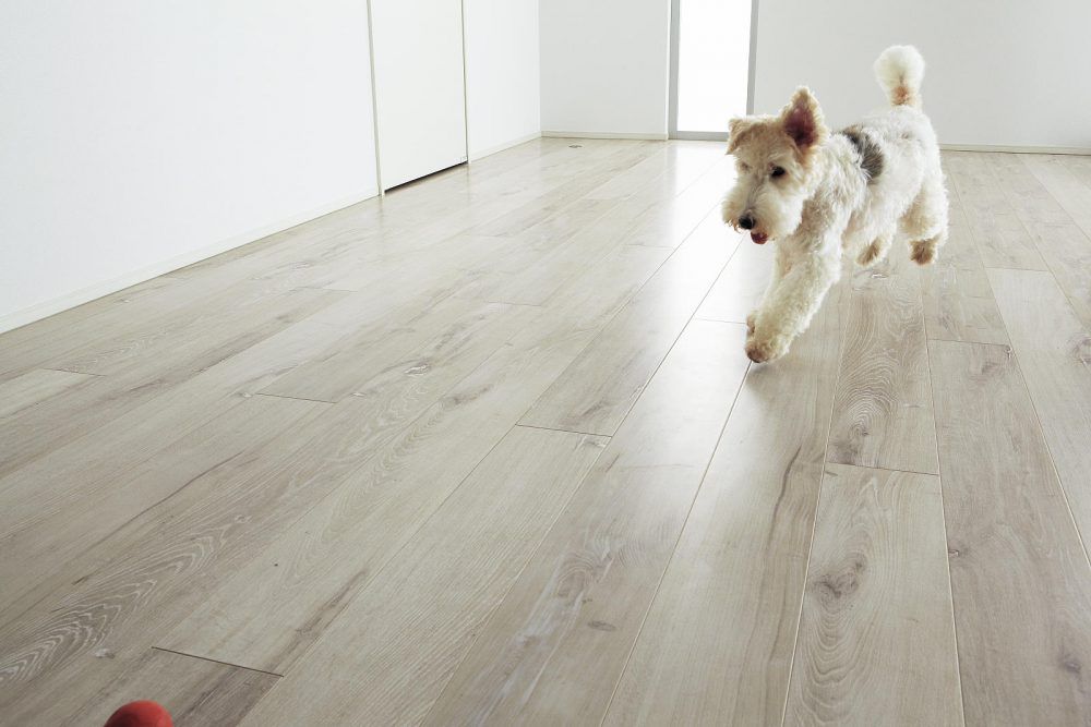 フローリング張り替え工事、どんな床材があるのかご紹介します!